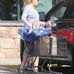 busy phillips shopping cart cover